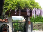 thumbs il giuggiolo bed breakfast Outdoors